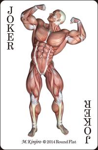筋肉トランプ
